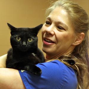 cat vet visits