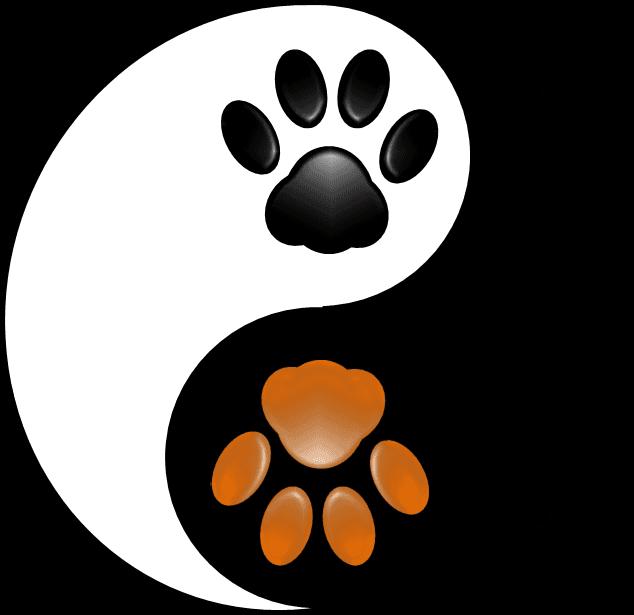 cherokee animal hospital yin yang alternative therapy
