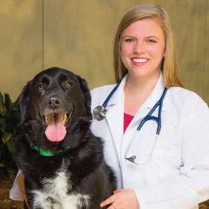 Veterinarian-Amanda-Johnson