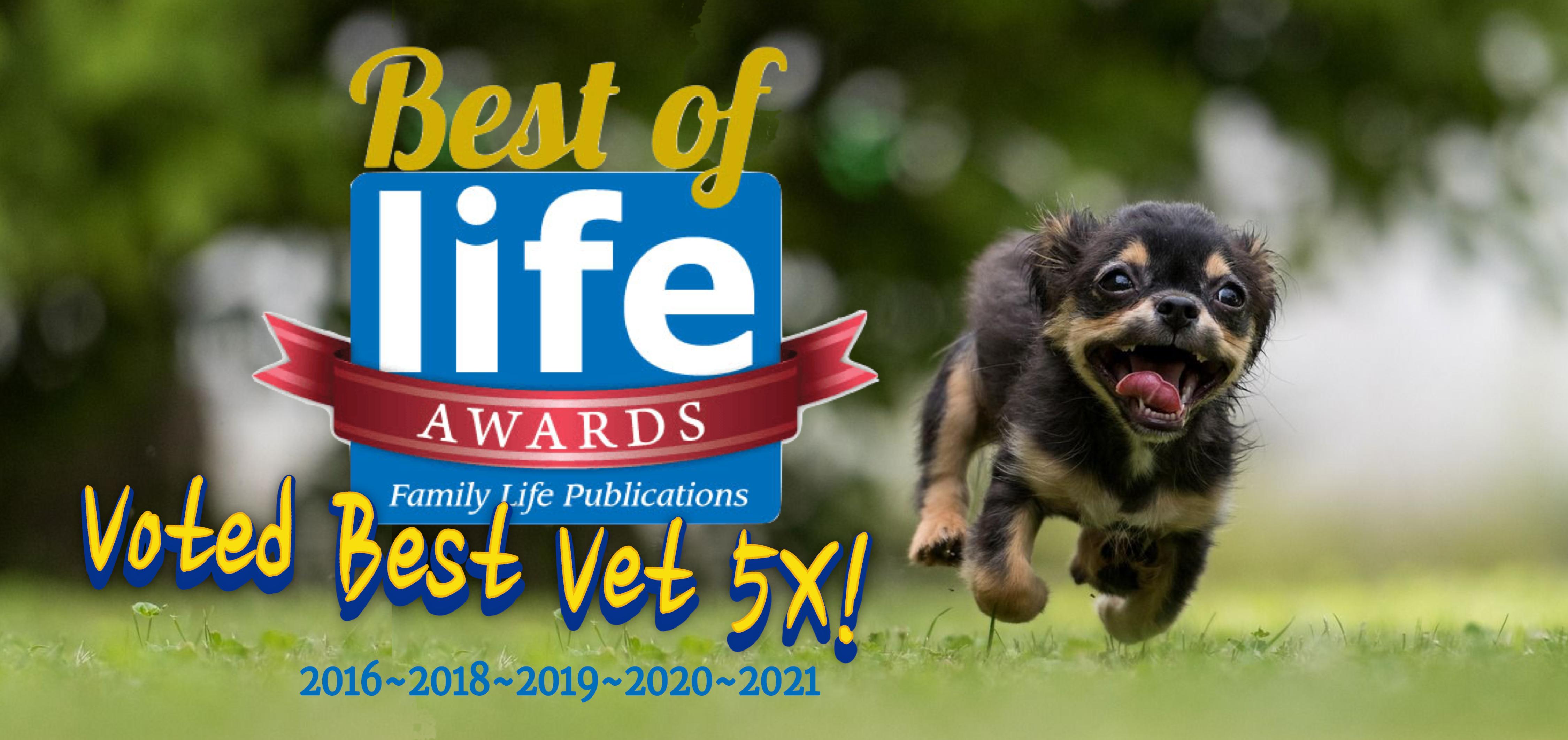 Best Veterinarian Canton Ga 2021